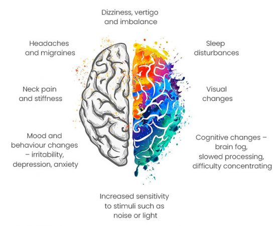 colourful brain